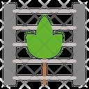 Vineyard Wine Nature Icon