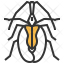 Violin Beetle Insect Icon