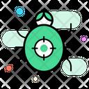 Virus Bug Icon