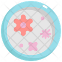 Dish Virus Bacteria Icon