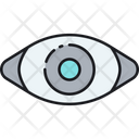 Retina Ready Web Design Eye View Icon