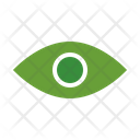 Vision Eyesight Eyeball Icon