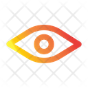 Vision View Show Password Icon