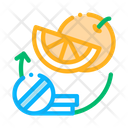 Medicines Fruits Supplements Icon