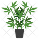 Vitex Potted Plant Icon