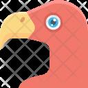 Vulture Bird Wild Icon