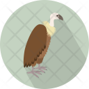 Vulture Bald Head Icon