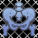 Waist bone Icon