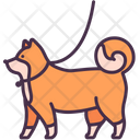 Dog Walking Pet Icon