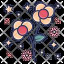 Blossom Wall Flower Bloom Icon