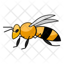 Wallace Bee Bee Insect Icon
