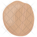 Walnut Nut Seed Icon