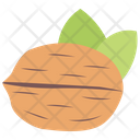 Walnut Dried Fruit Healthy Food Icon