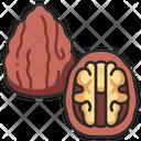 Food Walnut Kernel Icon