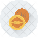 Walnut Dry Fruit Icon