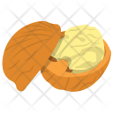 Walnut Nut Dry Icon