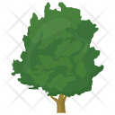 Walnut Shrub Greenery Icon