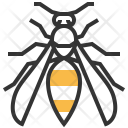 Wasp Insect Bug Icon