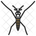 Water Strider Insect Icon