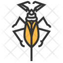 Water Insect Bug Icon