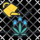 Water Plat Pot Icon