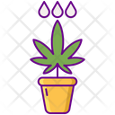 Water Plat Pot Icon