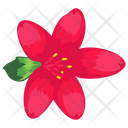 Water Lily Lotus Seasonal Flower Icon