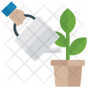 Watering Plant Planting Plant Growth Icon