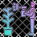 Plant Growth Hand Icon