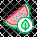Watermelon Leaf Organic Icon