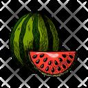 Watermelon Melon Genus Icon