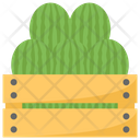 Watermelons In Crate Icon