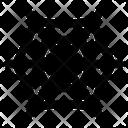 Web Spider Net Icon