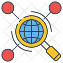 Web Research Magnifying Network Icon