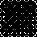 Web Design Website Video Website Interface Icon