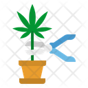 Weed Harvest Healthcar Icon
