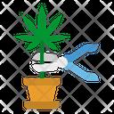 Weed Harvest Weed Harvest Icon