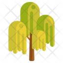 Weeping Willow Tree Weeping Icon