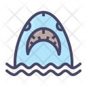 Shark Whale Fish Icon