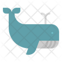 Whale Zoo Animals Icon