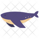 Whale Animal Sea Icon