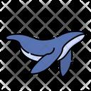 Whale Sea Ocean Icon