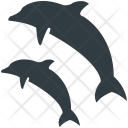 Whale Jumping Water Icon
