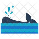 Whale Sea Water Icon