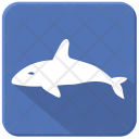 Whale Shark Sea Icon