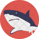 Whale Mammal Sea Icon
