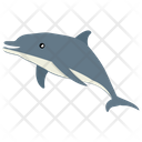 Whale Mammal Animal Icon
