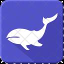 Ocean Whale Sea Icon