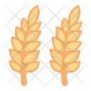 Wheat Seed Grass Icon