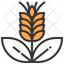Barley Wheat Leaves Icon